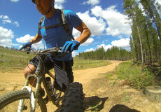 Mountain Biking. Rider riding bike on dirt track in forest Stock Photo