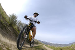 Mountain Biking Royalty Free Stock Photos
