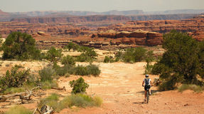 Mountain Biking Canyonlands. Woman riding a mountain bike on the Canyonlands Colorado River Overlook trail at the Needles District stock photo