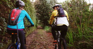 Mountain biking couple riding in the forest on a sunny day