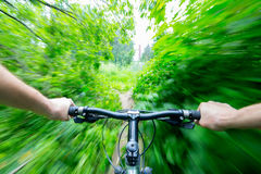 Mountain biking down hill descending on bicycle. Stock Images