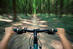 Mountain biking down hill descending fast. On bicycle. View from bikers eyes Stock Photography