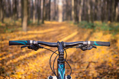 Mountain biking down hill descending fast on. Bicycle. View from bikers eyes Stock Images