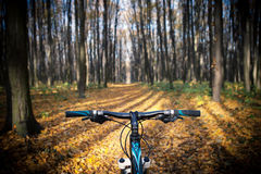 Mountain biking down hill descending fast on. Bicycle. View from bikers eyes Stock Photos