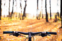 Mountain biking down hill descending fast on. Bicycle. View from bikers eyes Royalty Free Stock Image