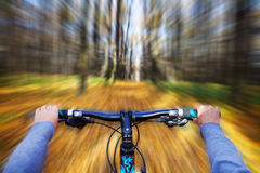 Mountain biking down hill descending fast on. Bicycle. View from bikers eyes Stock Photography