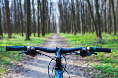 Mountain biking. Down hill descending fast on bicycle. View from bikers eyes Stock Photos