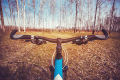 Mountain biking down hill descending fast on bicycle. Stock Image