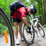 Mountain biking in a forest Stock Photo