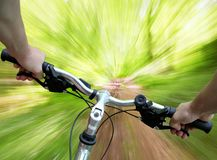 Mountain biking in the forest. Mountain biking down the trail, descending fast, subjective point of view Stock Photos