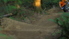 Mountain biking in the forest. Video of young man in orange shirt and blue helmet riding mountain bike through an undulating and winding  track in the forest and stock footage