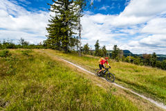 Mountain biking man riding in woods and mountains Royalty Free Stock Photography