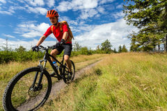 Mountain biking man riding in woods and mountains Stock Image