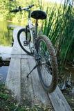 Mountain biking in nature summer sunny evening. stock photography