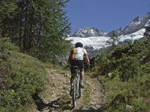Mountain biking in the Valais Alps Stock Photo
