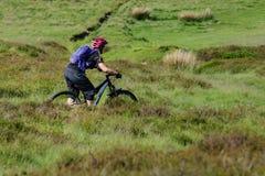 Mountain Biking Wales Royalty Free Stock Photography