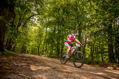 Mountain biking. Through the woods Stock Photos