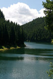 Mountain blue lake in summer forest. Peaceful scene Royalty Free Stock Photo