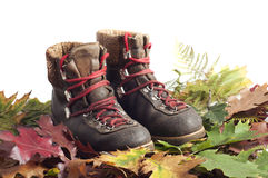 Mountain boot on an autumn leaves carpet Royalty Free Stock Photography