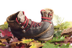 Mountain boot on an autumn leaves carpet. Mountain boots on an autumn leaves carpet with white background Royalty Free Stock Photography
