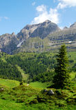 Mountain Brenta Royalty Free Stock Images
