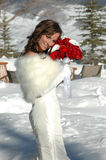 Mountain Bride. Beautiful woman in white fur trimmed wedding gown holding red roses outside in the snow. Bride standing in front of a mountain Royalty Free Stock Photos