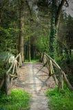 Mountain bridge. Older wooden mountain bridge by spring stock photography