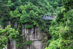 Mountain bridge. Among trees in zhangjijie reserve Stock Image