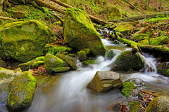Mountain brook among green stones Stock Images
