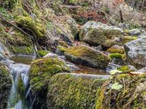 Mountain brook with mossy boulders Royalty Free Stock Image