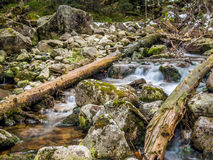 Mountain brook with mossy boulders Stock Photos