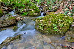Mountain brook Royalty Free Stock Images