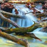 Mountain brook Stock Photography
