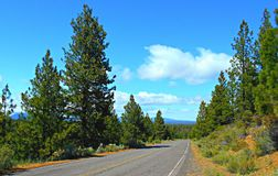Mountain Byway. View looking north along FR16 south of Sisters, OR stock photos