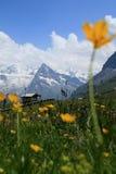 Mountain cabin stock photos