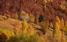 Mountain cabin in Carpathian mountains ,country side autumn in Romania stock photography