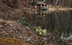 Mountain cabin in reflection Stock Image