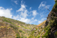 Mountain canyon Royalty Free Stock Images