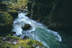 Mountain canyon River with deep forest Landscape Royalty Free Stock Photo