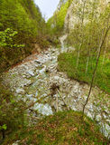 Mountain canyon on springtime Stock Photography