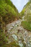 Mountain canyon on springtime Royalty Free Stock Photo