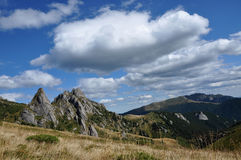 Mountain in the Carpathians Royalty Free Stock Images