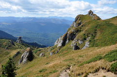 Mountain in the Carpathians Stock Images