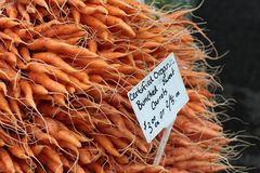 Mountain of carrots Royalty Free Stock Photo