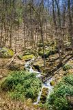 Mountain Cascading Waterfalls in the Woods. Small Cascading Mountain Waterfalls located in the forest of the Blue Ridge Mountains, George Washington National Royalty Free Stock Photos