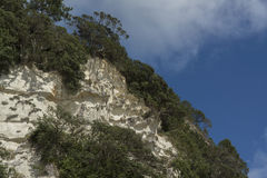 Mountain at Cathedral Cove beach. New Zealand Royalty Free Stock Image