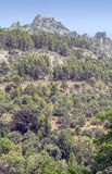 Mountain of Cazorla Stock Photos