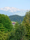 Mountain chalet. In the middle of the forest Royalty Free Stock Photo