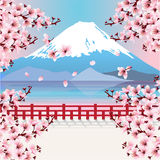 Mountain with cherry blossom flowers Royalty Free Stock Image