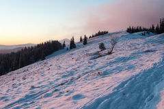 Mountain Chomiak into the sunset. Footprints in the snow and bare trees are bathed in the rays of the setting sun on the first day of the new year. On the street Stock Images